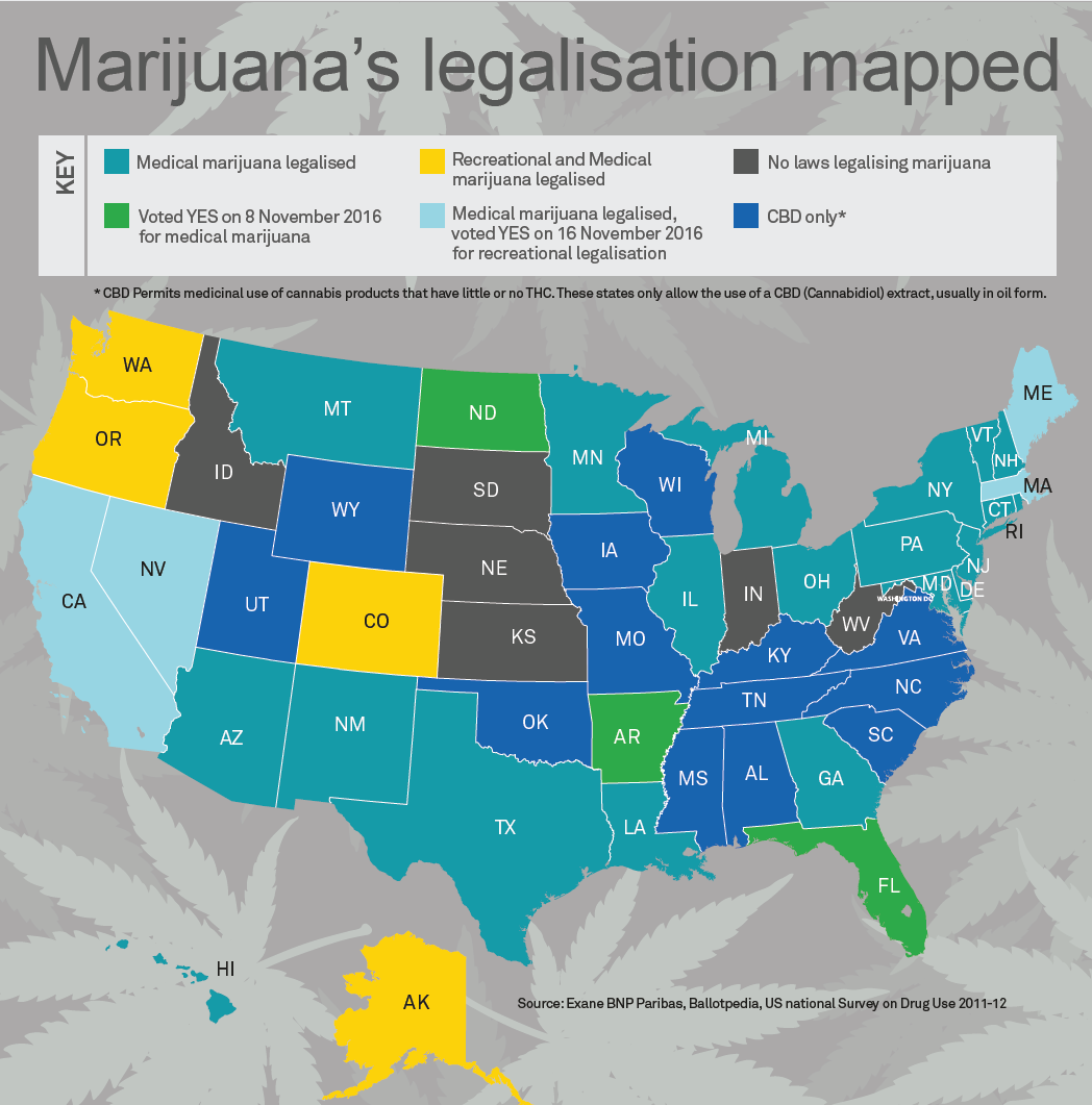 Marijuana infographic