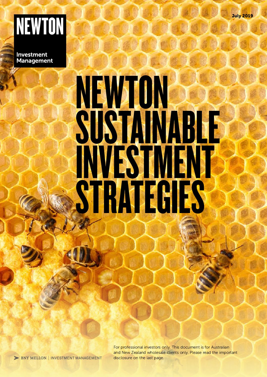 AUS Sustainable Investment Strategies brochure