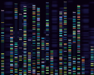 Episode 3: Gene Therapy: Cures, Risks and Opportunities